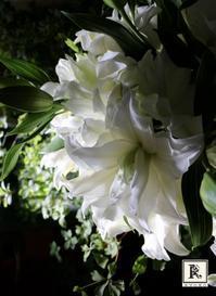 百合のウエディングブーケ - Bouquets_ryoko