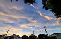 夕焼け小焼けで日が暮れて池までスイッチが入る2020/9/8 in Tokyo - むっちゃんの花鳥風月  ( 鳥・猫・花・空・山 )