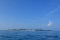 20.9.8海、再開。 - 沖縄本島 島んちゅガイドの『ダイビング日誌』