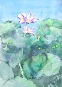 蓮根の花 - ryuuの手習い