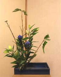季節のうつろい - 自然を見つめて自分と向き合う心の花