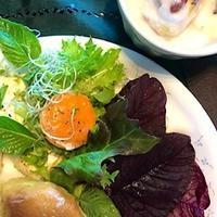夏野菜の復活 - 緑のしずく (ベランダガーデン便り)