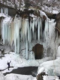 七条大滝の氷瀑2020 - 晴れときどきPUGSLEY