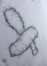 Sagunabrahman - AZOM COLLECTION -無作為のアート-