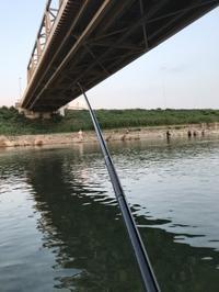 マグエバー新作毛ばり試釣庄川釣行まとめて掲載 - 鮎毛鉤釣りの旅