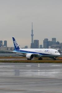 雨上がりの東京スカイツリー - 南の島の飛行機日記