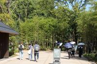 新ジャイアントパンダ舎「パンダのもり」がオープン(上野動物園) - 旅プラスの日記