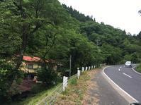 矢田川フィッシングセンター - 裏LUZ