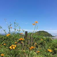 GO TOトラベルキャンペーン - 自然を見つめて自分と向き合う心の花