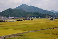 楞厳寺山と黄金田2020年9月10日 - 鉄道日和