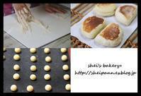 毎回異なる過去menulesson - *sheipann cafe*