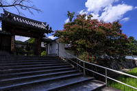 百日紅咲く石光寺 - 花景色-K.W.C. PhotoBlog