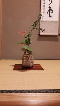 秋の花熨斗蘭 - 懐石椿亭(富山市)公式blog