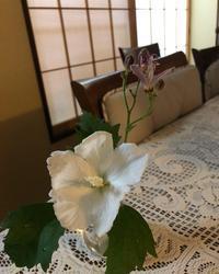 木槿 - ワタシ流 暮らし方   ☆アトリエきらら一級建築士事務所☆