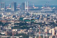 街中を飛ぶ - one day, one photo