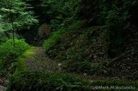奥の院-3 - Mark.M.Watanabeの熊本撮影紀行
