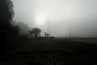 稲を刈り取りましたその1 - Surrounded by nature
