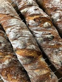 フルーツとクリームチーズのトルデュ - slow life,bread life