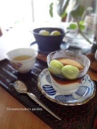 甘酒豆花 - シマトリネコの庭日記