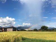 美しい景色@現場で見た虹・青々とした鮮明な富士山 - 小粋な道草ブログ