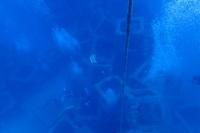 20.9.13すばらしい日々 - 沖縄本島 島んちゅガイドの『ダイビング日誌』