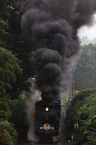 激闘SLやまぐち-36枚撮フィルム2本分超え - 蒸気屋が贈る日々の写真-exciteVer