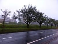 大工町あたり、放浪①~三陸さんへ - 新 LANILANIな日々