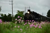 SLもおか - new 汽車の風景