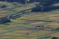 越後平野は稲刈りの日- 2020年初秋・磐越西線 - - ねこの撮った汽車