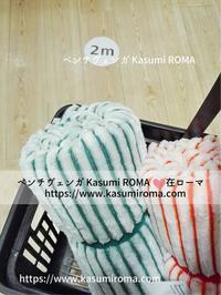 「タイガーと家を、2往復!」(愚)@とりとめのない話⑭ - 『ROMA』ローマ在住 ベンチヴェンガKasumiROMAの「ふぉとぶろぐ♪ 」