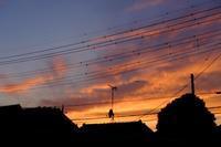 夕焼け空 - 空を見上げて