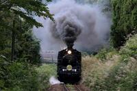 黒煙にススキが揺れる- 2020年初秋・磐越西線 - - ねこの撮った汽車