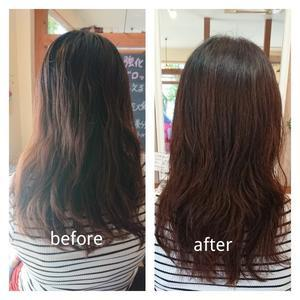 トリートメント - 松江市美容室 hair atelier bonet  大人女性のための美容室 。