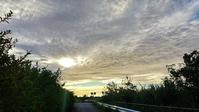 雲が美しい朝。 - なんくるないさ~、ワンッ!!