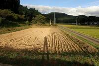 稲を刈り取りましたその2 - Surrounded by nature