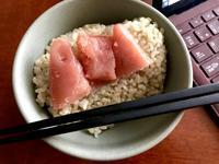 タラコと玄米ごはん - よく飲むオバチャン☆本日のメニュー