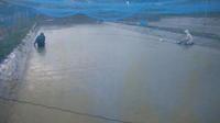 小西養鯉場&小西米プロジェクトTheOdyssey2020-70鯉の里は米の郷 - 鯉の里は、米の郷
