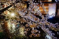 京都夜スナップ(26) - LUZ e SOMBRA
