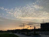 今日のお散歩夜明け - 浦安フォト日記