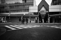 昼下がり20200912 - Yoshi-A の写真の楽しみ