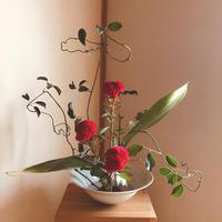 つる性植物を活ける - 自然を見つめて自分と向き合う心の花