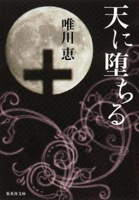 唯川恵作「天に堕ちる」を読みました。 - rodolfoの決戦=血栓な日々