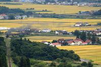 田園-収穫の時期磐越西線 - 蒸気屋が贈る日々の写真-exciteVer
