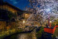 京都夜スナップ(28) - LUZ e SOMBRA