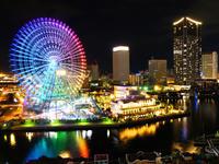 【東京在住者の予約解禁】横浜市助成50%+GoToトラベル35% 大型客船ロイヤルウイングランチクルーズ&紅葉とイルミネーション人気スポットめぐりバスツアー - 日帰りツアー・社会見学・東京観光・体験イベン