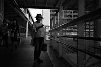 土曜日の昼下がり20200919 - Yoshi-A の写真の楽しみ