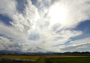 秋の空 - SHIMAちゃんの写真館
