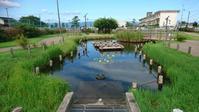 警告文にも注水作業⁉️ - Longhill Net Blog