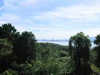 2020/9/19今日の島暮らし/ピヨピヨからコッコへ - 能古島の歩き方