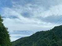 【topics】 オオクワ灯火採集  2020年  vol2 長梅雨の合間に…  予告編 - Kuwashinブログ
